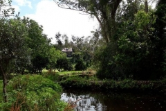 Quirky Woods - 6 acres of tranquility
