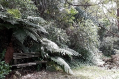 Forest seat - listen to the trees rustle... awesome at night!!