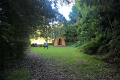 Morepork Forest Cabin seen from Rimu Alley
